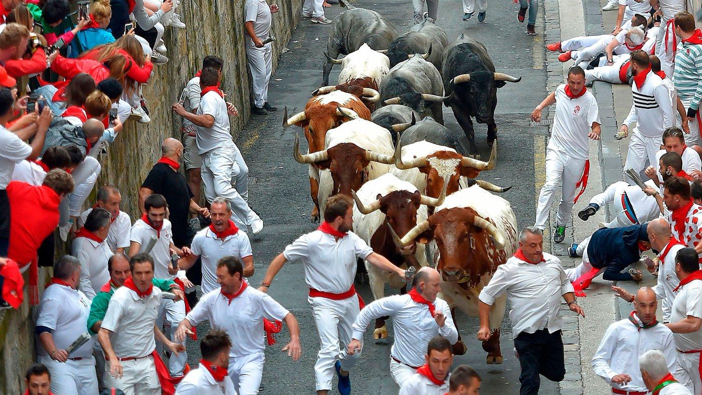 Running of the Bulls.jpeg