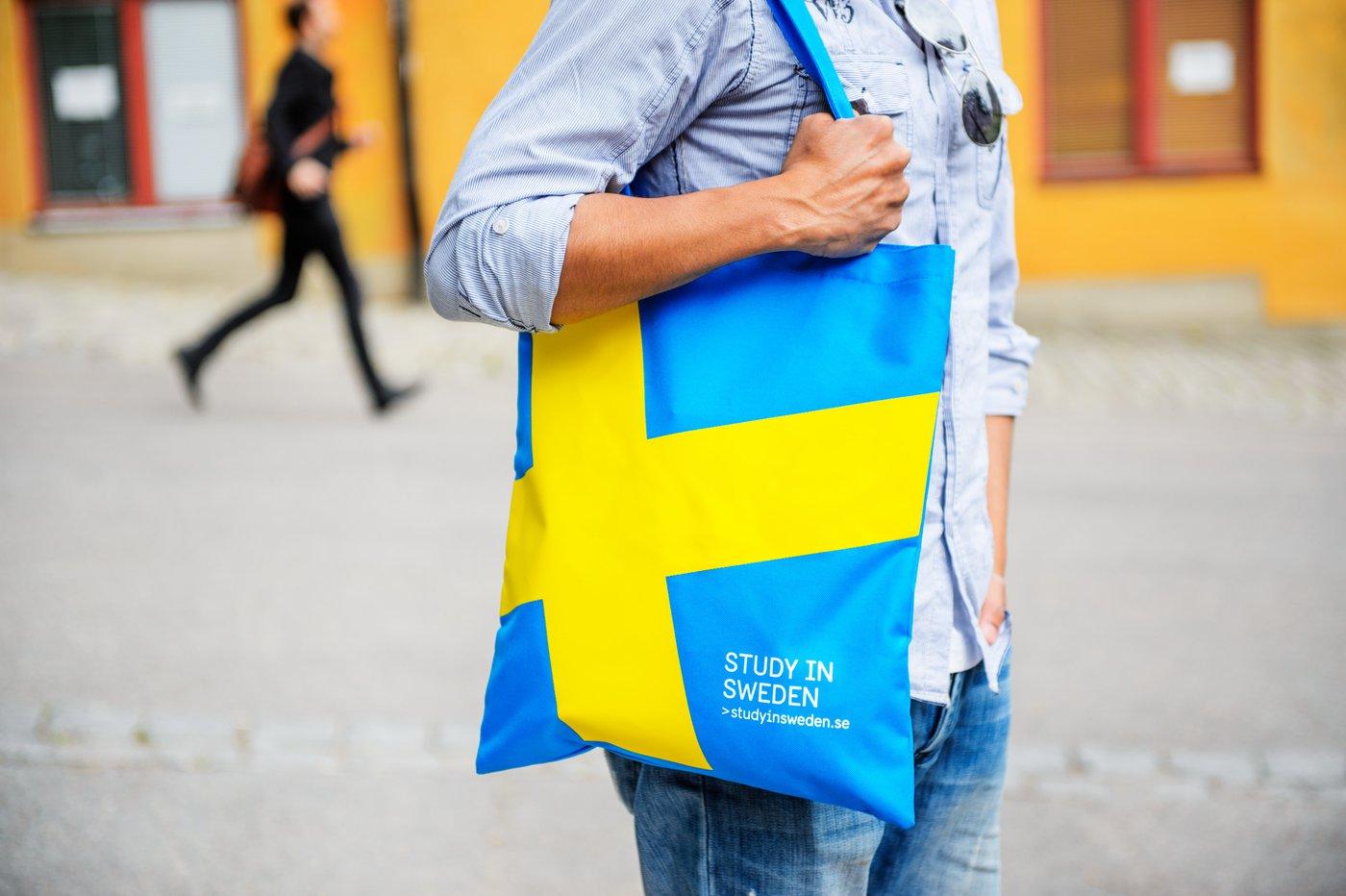 Simon Paulin/imagebank.sweden.se
